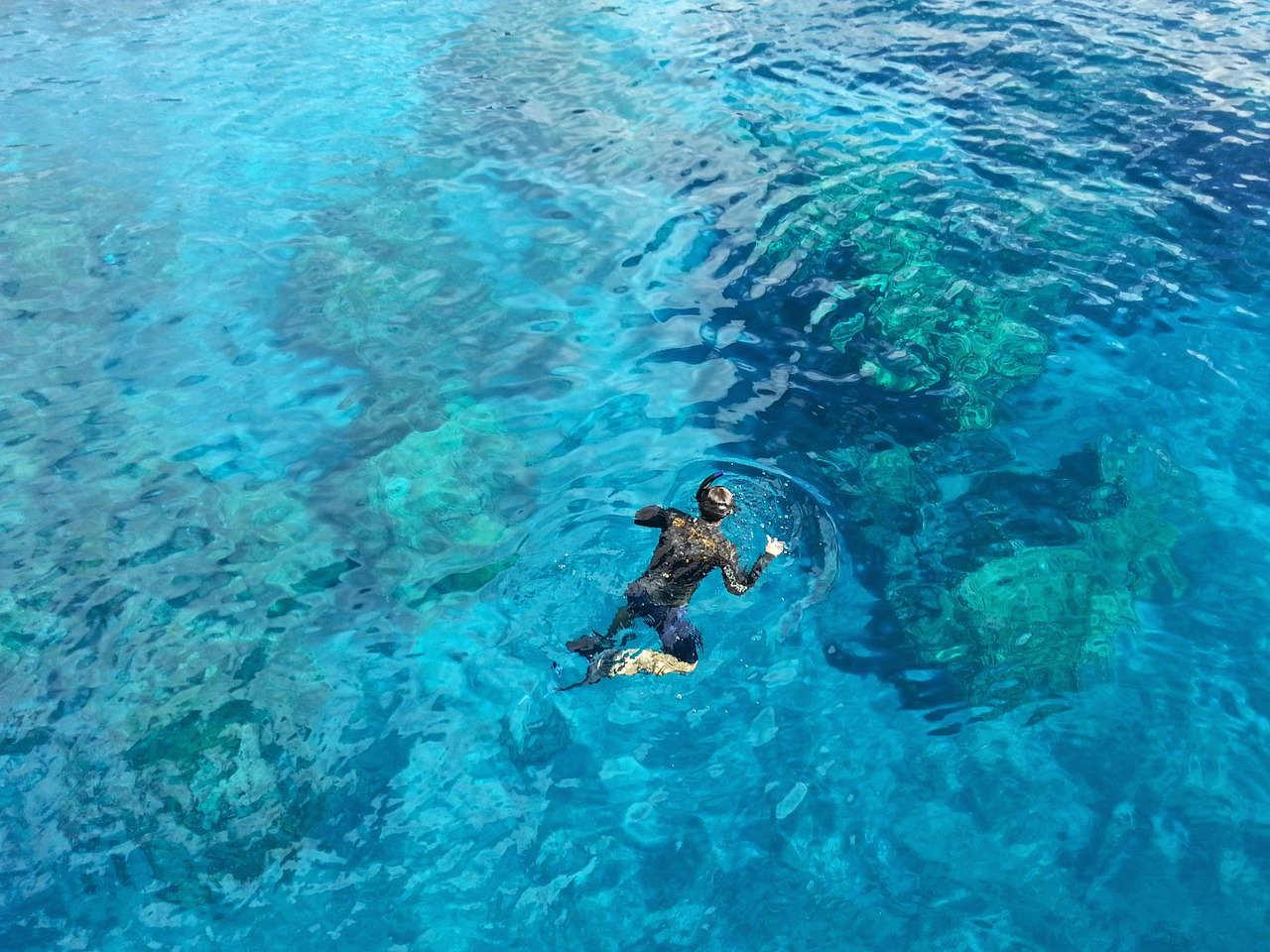 Snorkeling alle Maldive: dove ammirare il reef