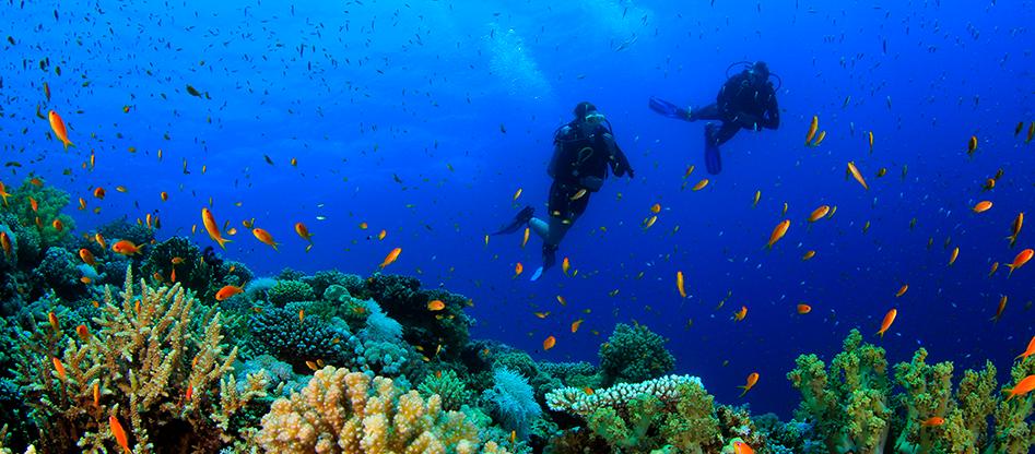 MaRhe Maldive: il centro ricerca di Bicocca alle Maldive